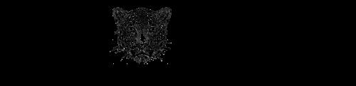 Wyld workout Logo